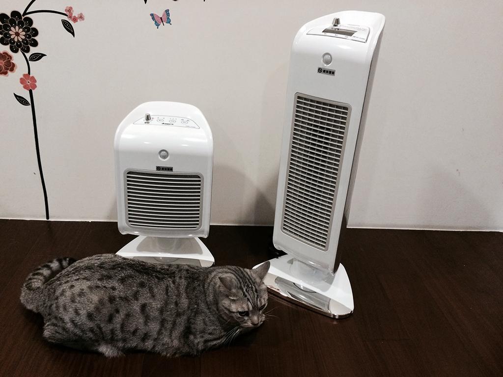 有了 Airmate 人體感知陶瓷電暖器,冬天不用再一個人擁抱冷冷的夜