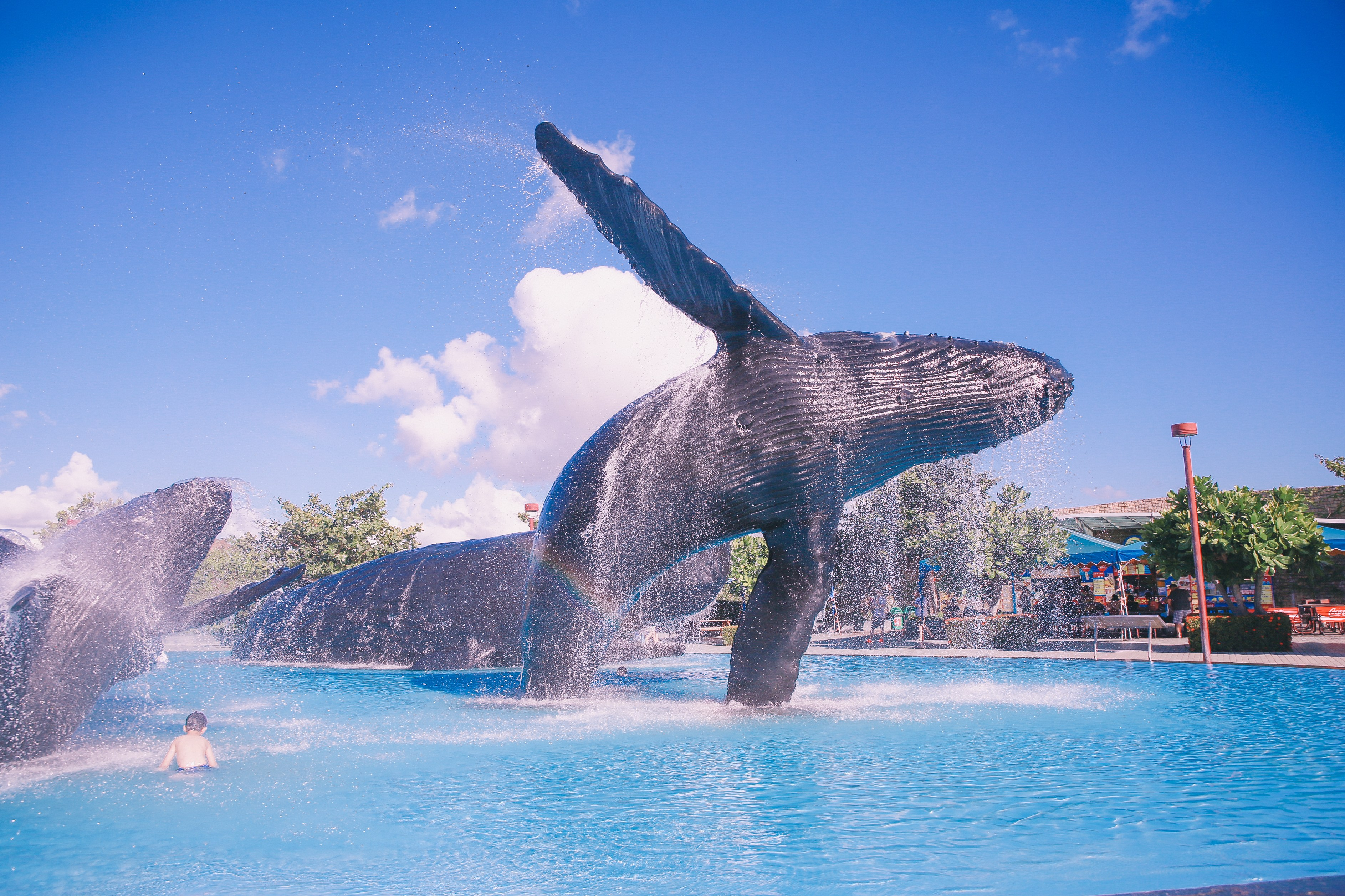 出發!屏東海生館,陪孩子一起探訪海底世界的奇幻吧!
