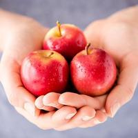 rockit蘋果