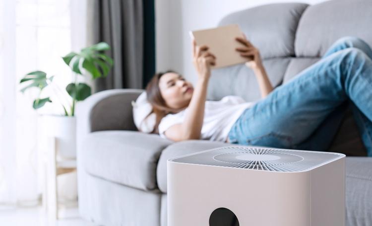 空氣品質差怎麼辦?套房/小坪數專用空氣清淨機推薦排行(小米、honeywell)